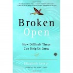 Broken Open: How Difficult Times Can Help Us to Grow