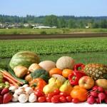 Mediterranean Diet Wins