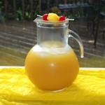 Pina-Naranja Margarita