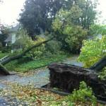 Hurricane Sandy Destruction 11