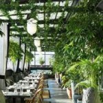 Rooftop Brunch and Lunch Spots in NYC
