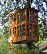 Treehouse Masters Tips From Town