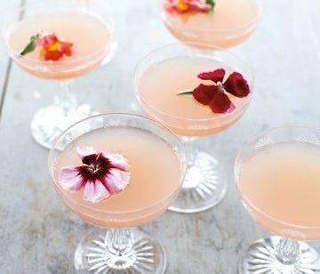 cocktail, Lillet Rose, Lillet, gin, Ruby Red Grapefruit juice