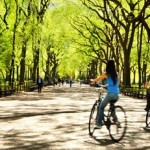 Central Park Day Trip Deal