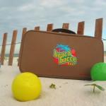 beach bocce ball