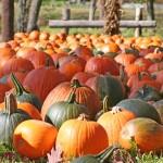 October Happenings