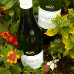 5 Under $25: Earth-friendly Wines From South Africa