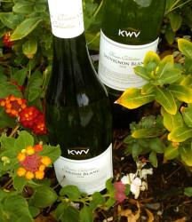 KWV Whites 2