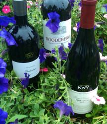 KWV reds garden