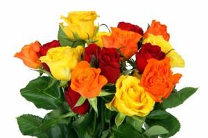 colorful_rose_bouquet_187931