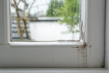 Rain Mold Window