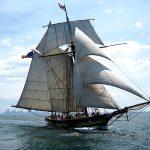 Climb Aboard a Tall Ship