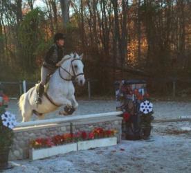 olivia pony power