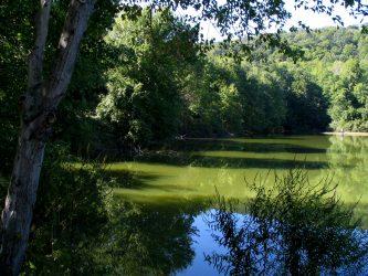 MAhwah scarlet_oak_pond