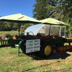 Have you seen Marietta's favorite farm stand?