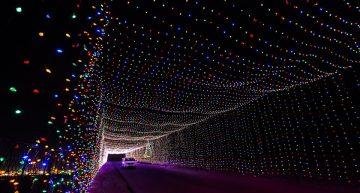 festival-lights cleveland