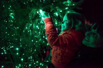 girl tree westfield