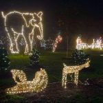Get in the Holiday Spirit with the Kids at Turtleback Zoo!