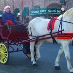 Holiday Horse and Wagon Rides