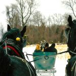 Dashing Through the Snow in a One (or Two) Horse Open Sleigh