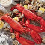 Belmar Seafood Festival 2018