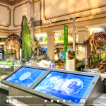 Take a Virtual Trip to One of These Museums or Parks