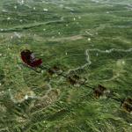 How to Track Santa Tonight
