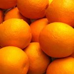 RHS Band Citrus and Fresh Fruit Sale